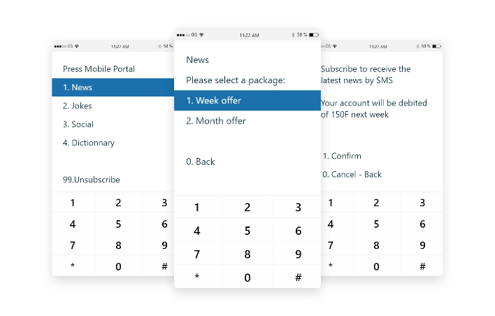 Screens of USSD options